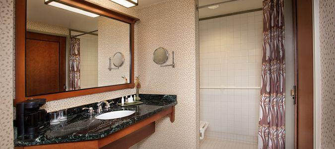 Accessible Guestroom Bath