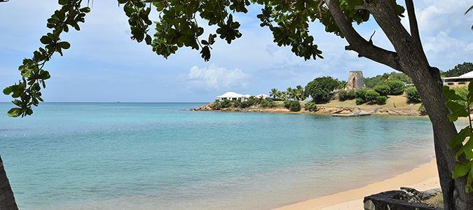Sea Grape Beach
