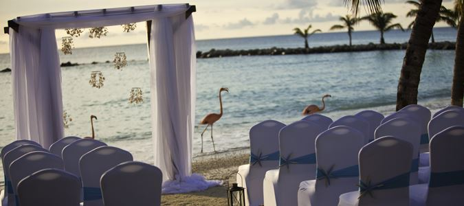 Flamingo Beach Weddings