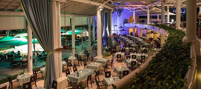 Chelonia Restaurant