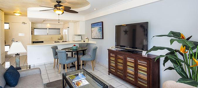 One Bedroom Park View Suite