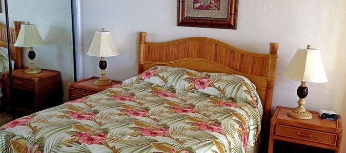 One Bedroom Partial Oceanview Suite