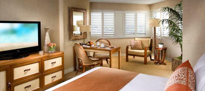 Deluxe Plus Guestroom
