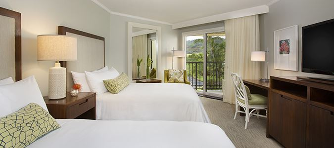 Deluxe Mountain View Guestroom
