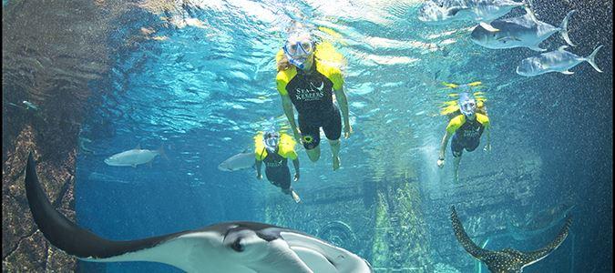 Challenger Water Slide