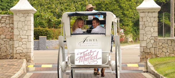 Just Married Horse and Buggy