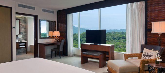 Deluxe Greenview Guestroom