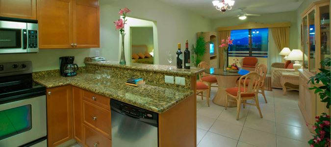 Suite Kitchen, Dining and Living Space