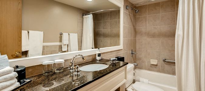 Lodge Guestroom Bath
