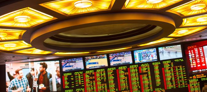 Exciting Race and Sports Book with 360 Degrees of Viewing