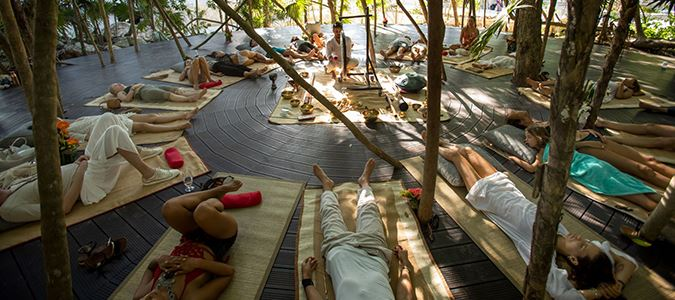 Jungle Spa