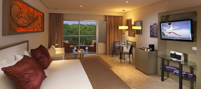 Luxury Junior Suite Tropical Gardenview