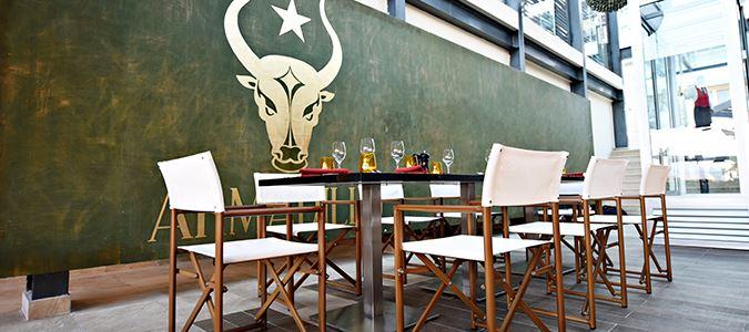 Armadillo Tex-Mex Restaurant
