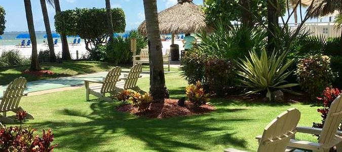 Tropical Beach Side Palm Court
